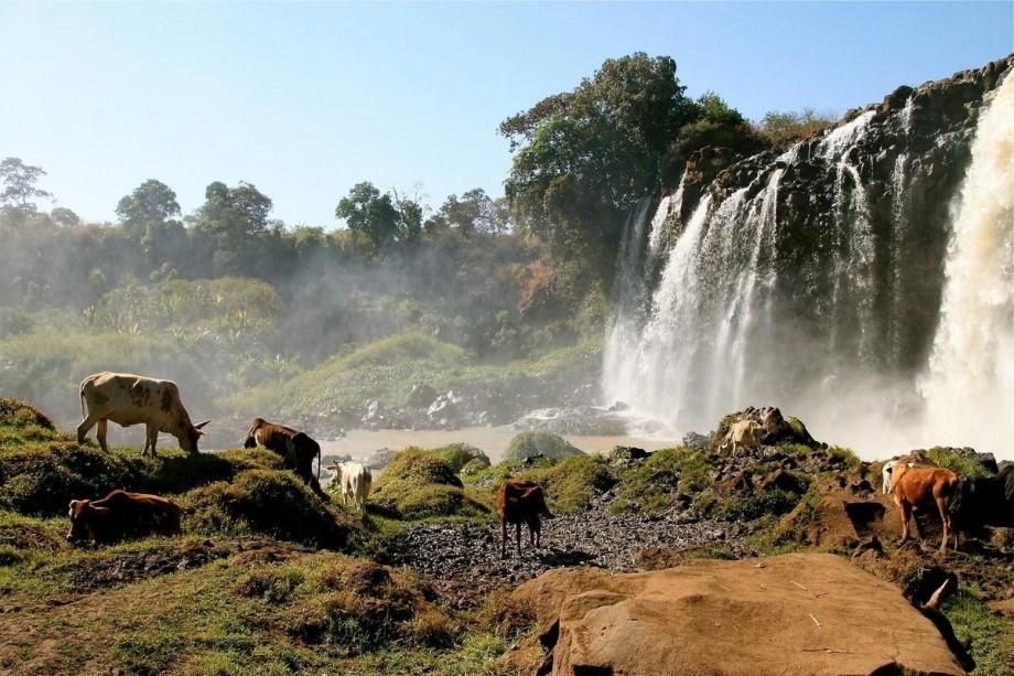Природная среда Эфиопии